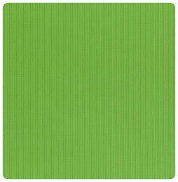 Fabric Finders - Apple Green Pique - Chubby Fat Quarter